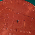 Smallest micro molded component sitting on penny measuring 800 microns long.